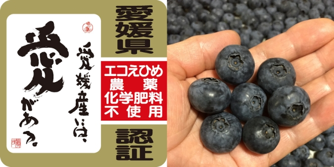 エコえひめ認証 農薬・化学肥料不使用